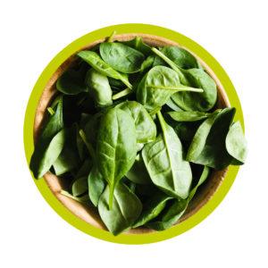 lecker und grün: gesunde Ernährung